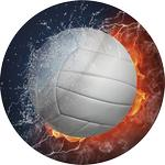 Volleyball Emblem ES77